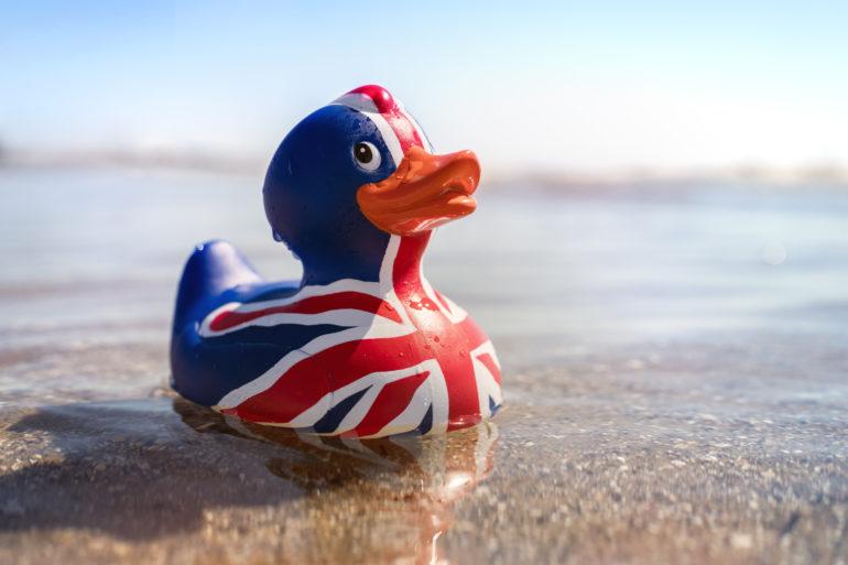 The Brexit Union Jack Duck