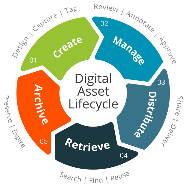 digital asset lifecycle